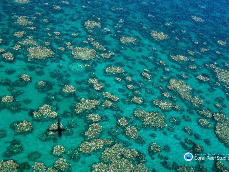 Aerial surveys have revealed a third bleaching event on the Great Barrier Reef.